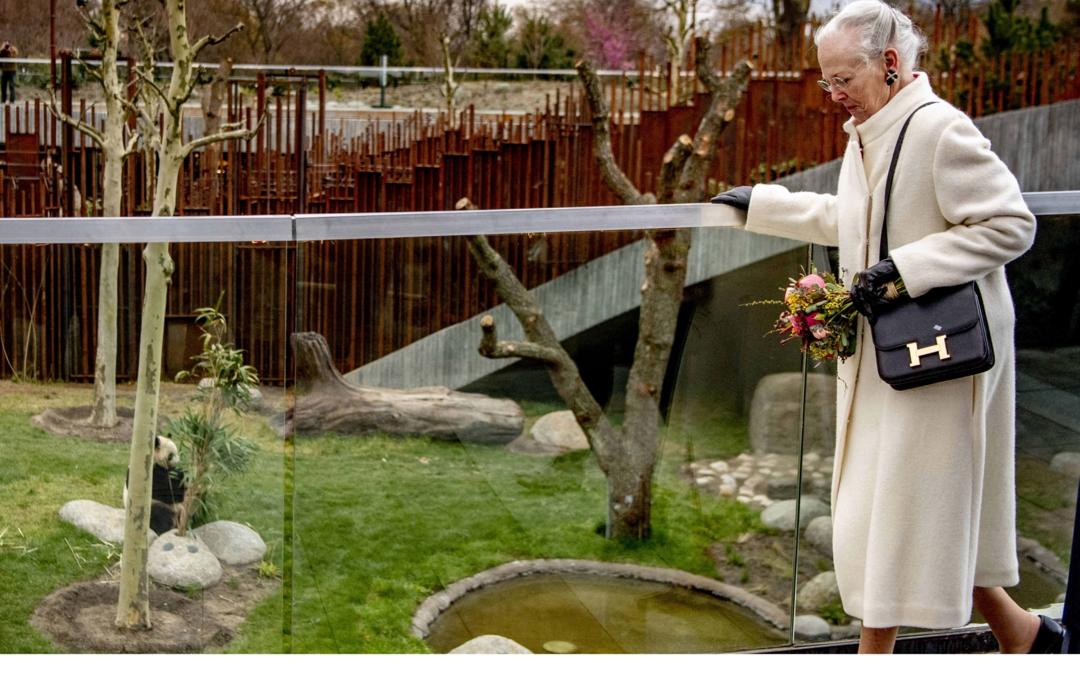 Bildet viser Danmarks dronning Margrethe som besøker pandaer i Københavns zoologiske hage.
