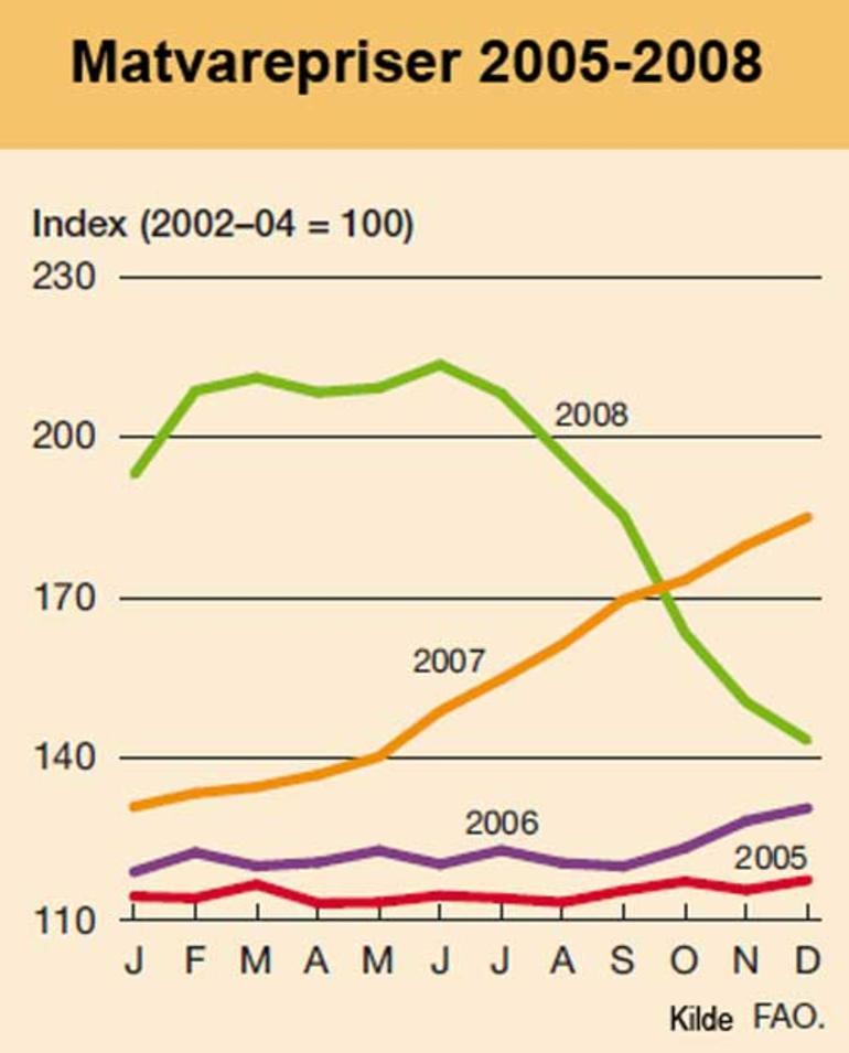 Graf som viser prisutviklingen på matvarer, 2005-2008