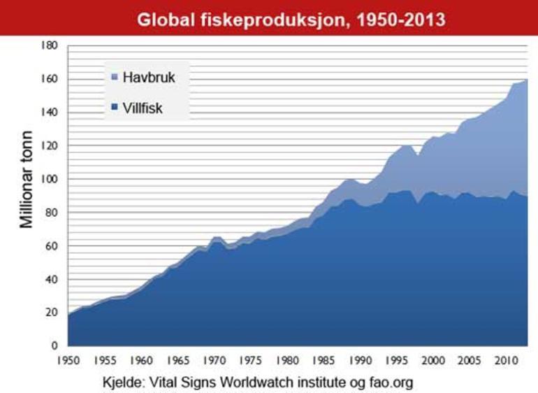 Oversikt som viser det globale fiskeproduksjonen fordelt på villfisk og havbruk