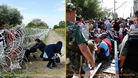 Bilder av flyktninger.