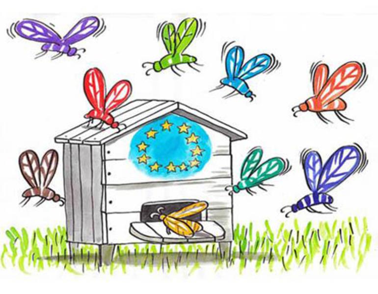 Bilde av eit omsverma EU