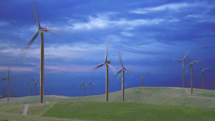The image shows a windmill park